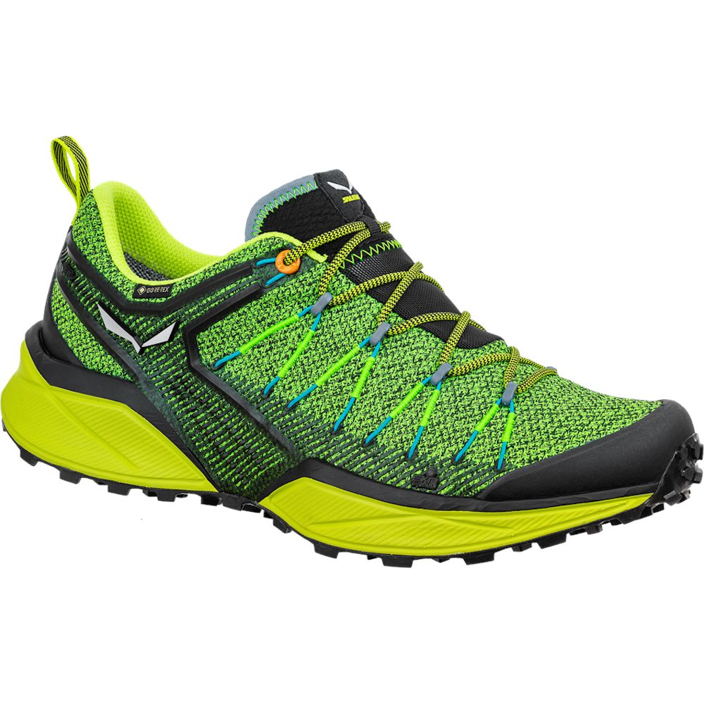 Кросівки Salewa MS Dropline GTX