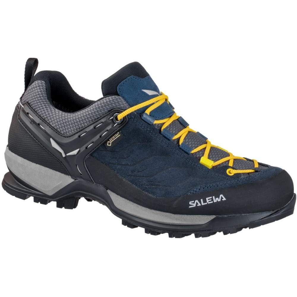 Кросівки Salewa MS MTN Trainer GTX